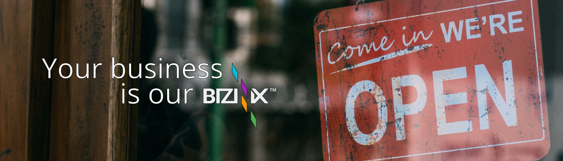 Your business is our BIZINIX™